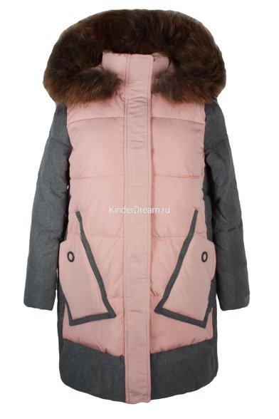 Комбинированная куртка Vitacci 2171461-48 Vitacci