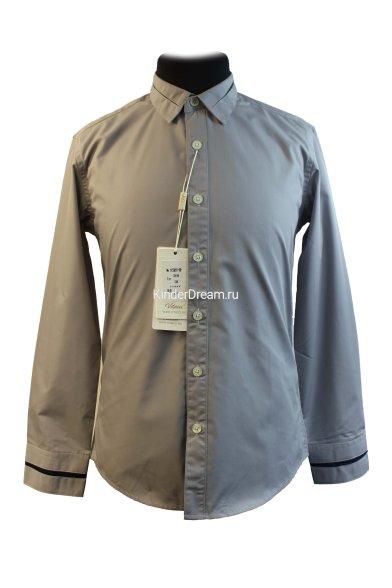 Классическая рубашка Vitacci 1153221-02 Vitacci